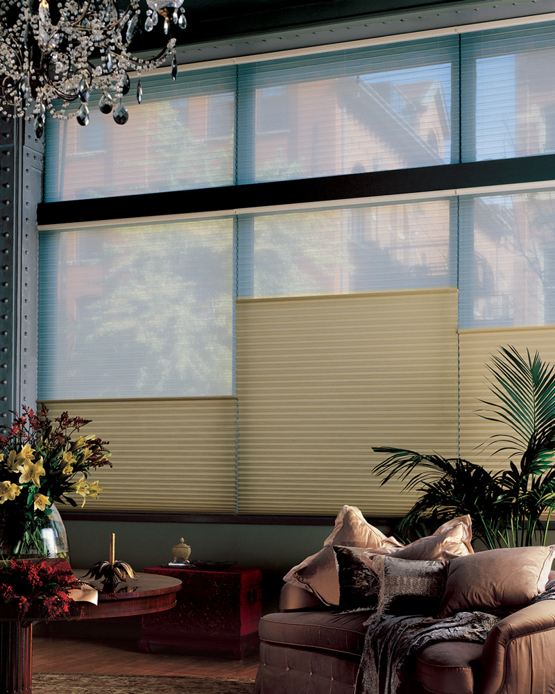 Hunter Douglas Duette® Architella®