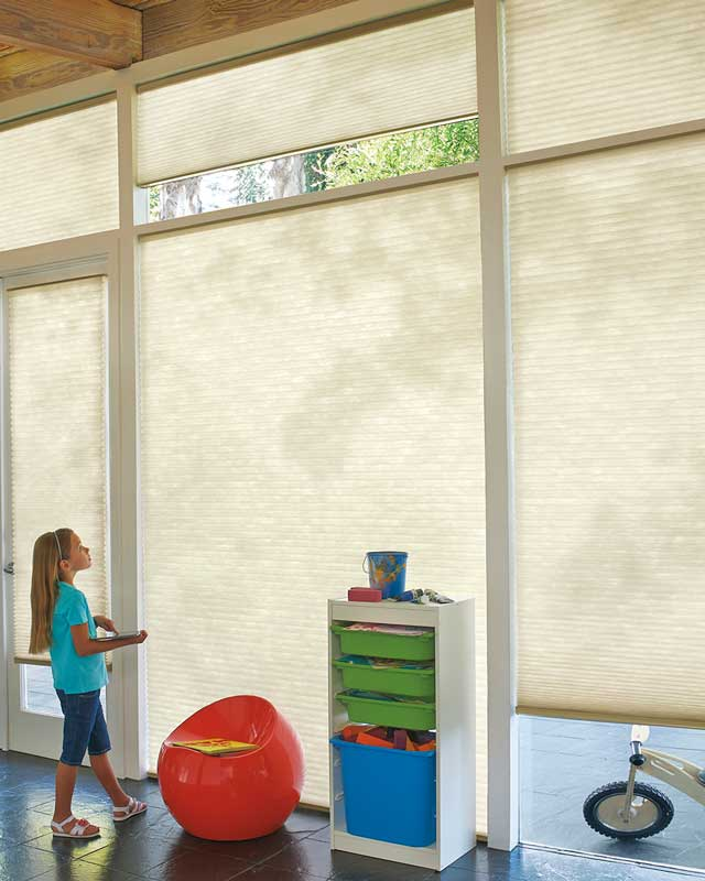 Hunter Douglas Applause® Honeycomb Shades with PowerView™