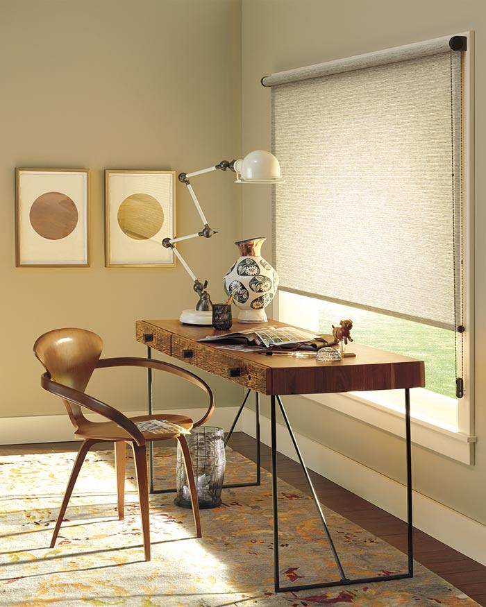 Hunter Douglas Designer Roller Shades in Home Office