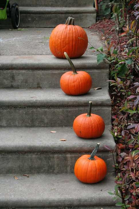 pumpkins-on-steps